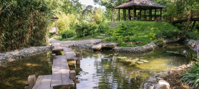 Hidden Garden Gems : The Capital's Greatest Little Patches of Green